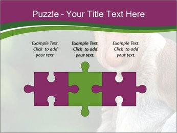 0000079951 PowerPoint Template - Slide 42