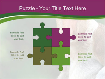 0000079951 PowerPoint Templates - Slide 43
