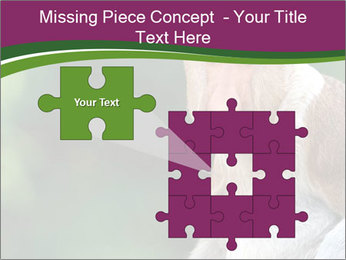 0000079951 PowerPoint Templates - Slide 45