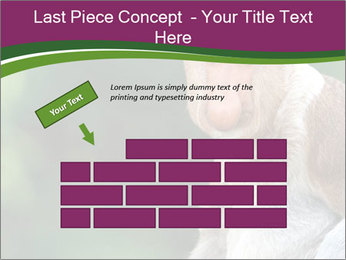 0000079951 PowerPoint Templates - Slide 46