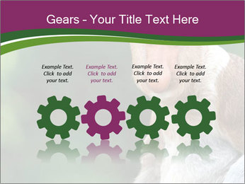 0000079951 PowerPoint Templates - Slide 48