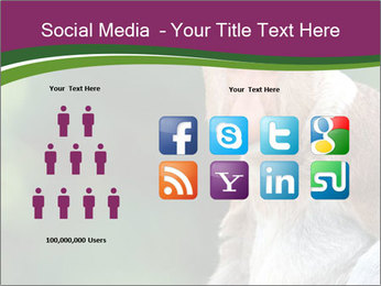 0000079951 PowerPoint Templates - Slide 5