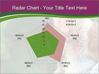 0000079951 PowerPoint Template - Slide 51
