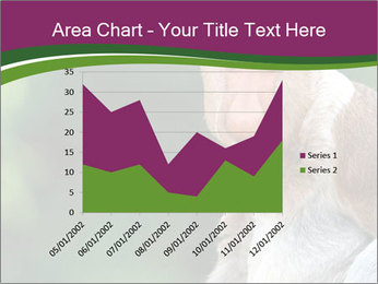 0000079951 PowerPoint Template - Slide 53