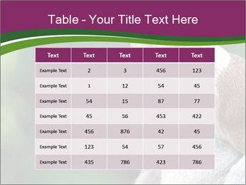 0000079951 PowerPoint Template - Slide 55