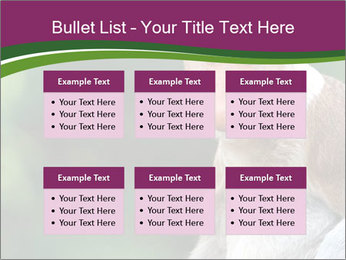 0000079951 PowerPoint Template - Slide 56