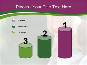 0000079951 PowerPoint Templates - Slide 65