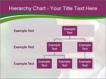 0000079951 PowerPoint Template - Slide 67