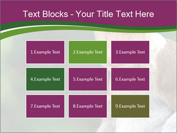 0000079951 PowerPoint Templates - Slide 68