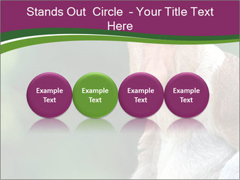 0000079951 PowerPoint Templates - Slide 76