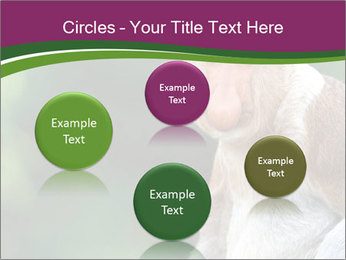 0000079951 PowerPoint Templates - Slide 77