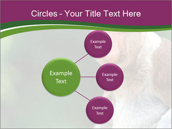 0000079951 PowerPoint Templates - Slide 79