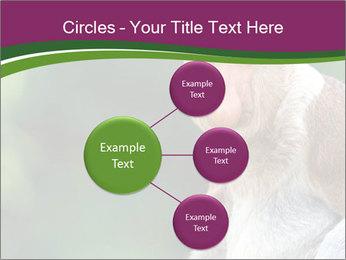 0000079951 PowerPoint Template - Slide 79