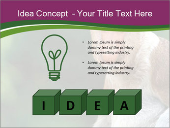0000079951 PowerPoint Templates - Slide 80