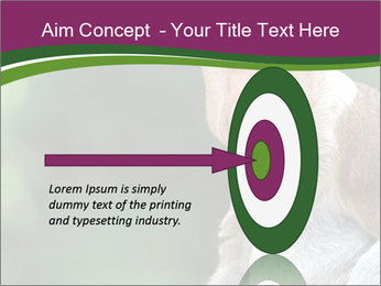 0000079951 PowerPoint Template - Slide 83