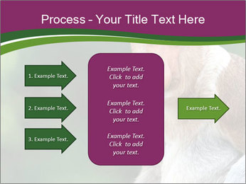 0000079951 PowerPoint Templates - Slide 85