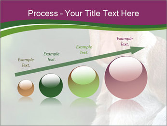 0000079951 PowerPoint Templates - Slide 87