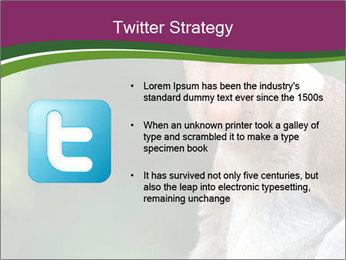 0000079951 PowerPoint Template - Slide 9