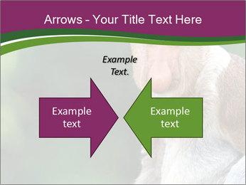 0000079951 PowerPoint Template - Slide 90