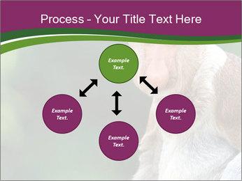0000079951 PowerPoint Template - Slide 91