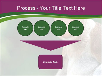 0000079951 PowerPoint Template - Slide 93