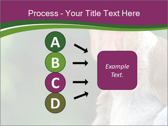 0000079951 PowerPoint Template - Slide 94
