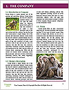 0000079951 Word Template - Page 3