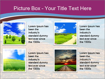0000079955 PowerPoint Templates - Slide 14