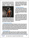0000079956 Word Template - Page 4