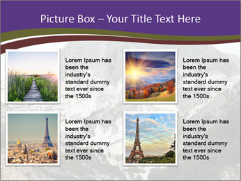 0000079957 PowerPoint Template - Slide 14
