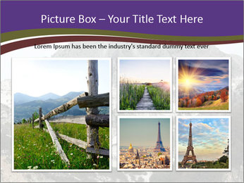 0000079957 PowerPoint Template - Slide 19