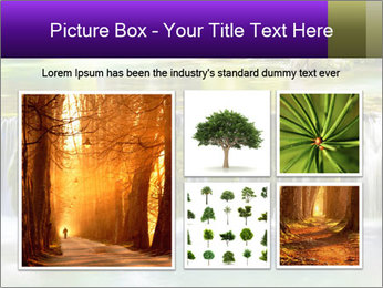 0000079964 PowerPoint Template - Slide 19