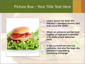 0000079967 PowerPoint Template - Slide 13