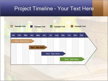0000079972 PowerPoint Templates - Slide 25