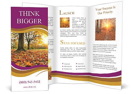 0000079976 Brochure Template