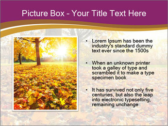 0000079976 PowerPoint Template - Slide 13