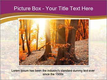 0000079976 PowerPoint Template - Slide 16