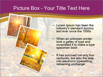 0000079976 PowerPoint Template - Slide 17