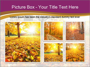 0000079976 PowerPoint Template - Slide 19