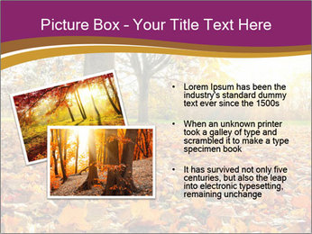 0000079976 PowerPoint Template - Slide 20