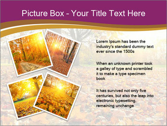 0000079976 PowerPoint Template - Slide 23