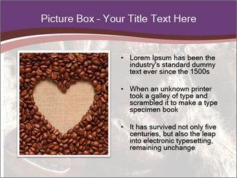 0000079984 PowerPoint Template - Slide 13