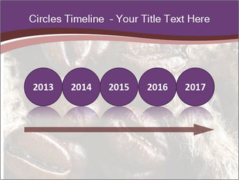 0000079984 PowerPoint Template - Slide 29