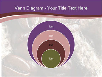 0000079984 PowerPoint Template - Slide 34
