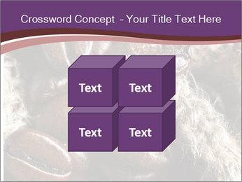 0000079984 PowerPoint Template - Slide 39