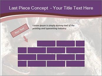 0000079984 PowerPoint Template - Slide 46