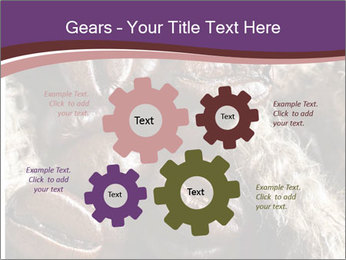0000079984 PowerPoint Template - Slide 47