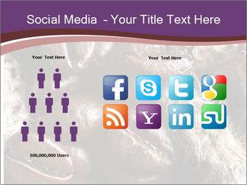 0000079984 PowerPoint Template - Slide 5