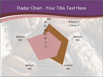 0000079984 PowerPoint Template - Slide 51