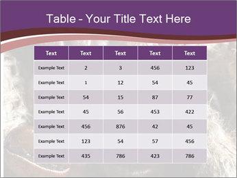 0000079984 PowerPoint Template - Slide 55